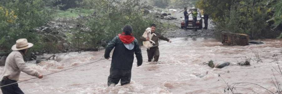 Rescatan a dos personas, 18 perritos y dos gatos tras crecida de río